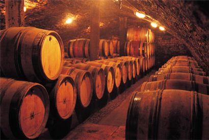 Cave aux Vins de France